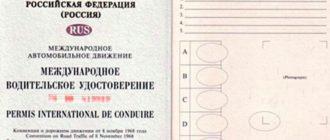 Международные водительские права — как получить в 2019 году?