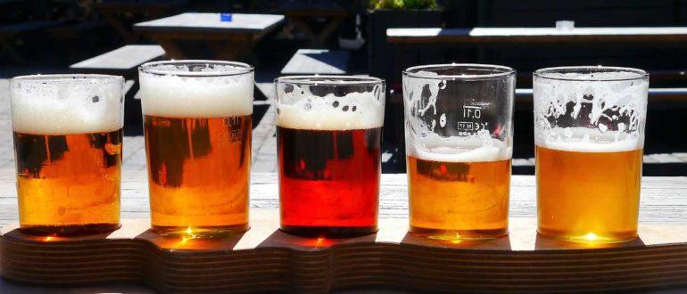 Новый закон о пиве 2019 года – последние изменения (обзор законопроекта 606539-7)