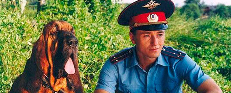 Участковый уполномоченный полиции: обязанности и права по Приказу МВД РФ 205 от 29.03.2019