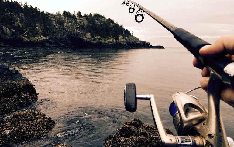 Новый закон о любительском рыболовстве с 1 января 2020 года - что изменилось?