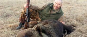 Закон о вольерной охоте 2020 года – текст