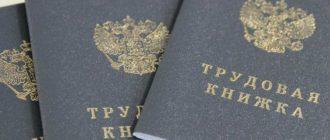 Статья 66.1 ТК РФ с 2020 года – электронная трудовая книжка