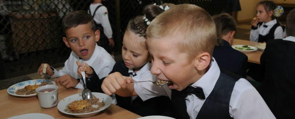 Новый закон о горячем питании в школе 2020 года — обзор документа