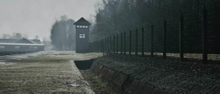 Уголовная амнистия в 2021 году – стоит ли ждать акта милосердия?